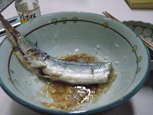 蒸し秋刀魚おろし添え.jpg